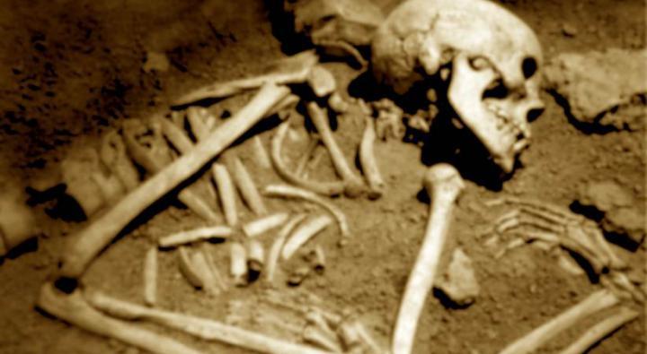 مراحل تجزیه بدن انسان در قبر :