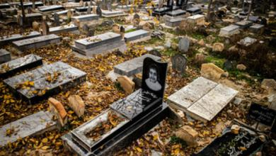 بهترین زمان برای زیارت اموات چه زمانی است ؟